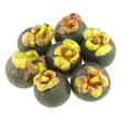 Group mangosteen isolated