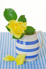 Yellow Rose in a Jug