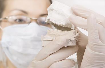dentist holding denture model, correction of bite