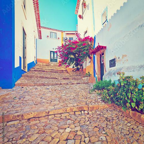 Street - 65508394