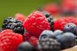 Healthy Organic Ripe Berries