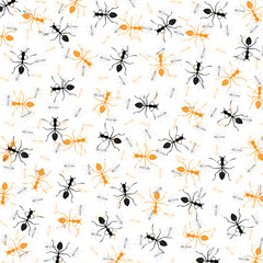 Seamless wallpaper ant.