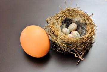 Nido di passero con uova e uovo di gallina