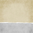 Square Light Beige Grunge Torn Textured Background