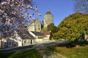 Châteaudun en fleurs