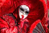 maschera del carnevale di Venezia 2014