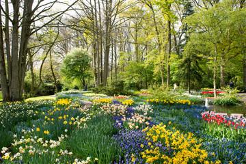Promenade au jardin de Keukenhof