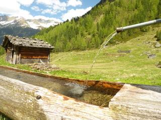 Holzbrunnen auf der Alm