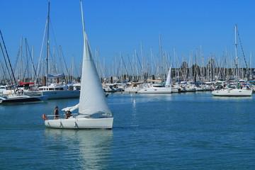 Voilier au port de plaisance de La Rochelle