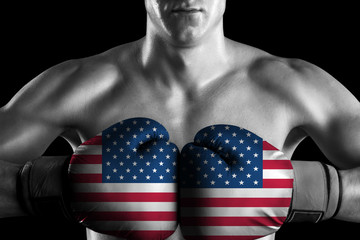 B&W fighter with USA color gloves