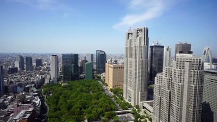 新緑春の東京都庁と新宿高層ビル群