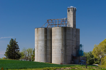 Concrete grain storage silos with elevator