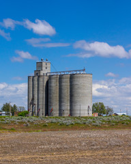 Grain storage facility with silos