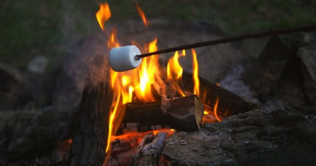 roasting marshmallow closeup video. Ultra HD 4K footage.