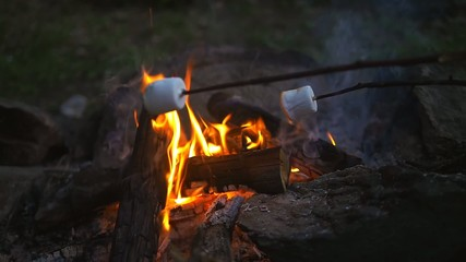 roasting marshmallow slow motion video.