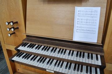 organo a canne3