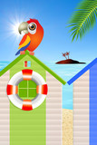 parrot on cabins sea