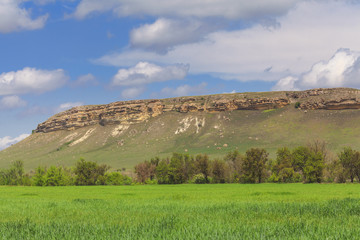 Green field, rock and cloudscape