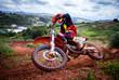 Motocross rider - 65544745