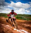 Motocross rider - 65544765