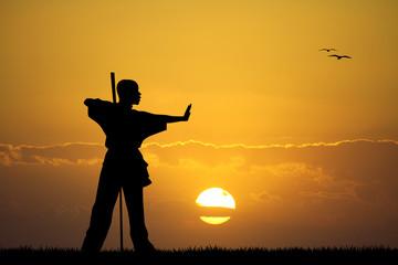 kung fu at sunset