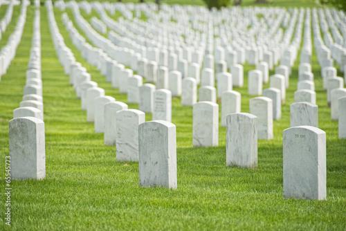 Plexiglas Begraafplaats arlington cemetery graveyard