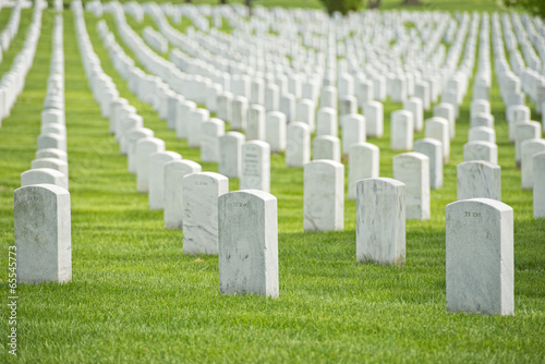 arlington cemetery graveyard - 65545773
