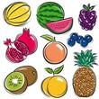 set of fruits, melon, watermelon, blackberry, peach, vector