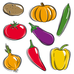 set of vegetable, potato, pumpkin, cucumber, vector