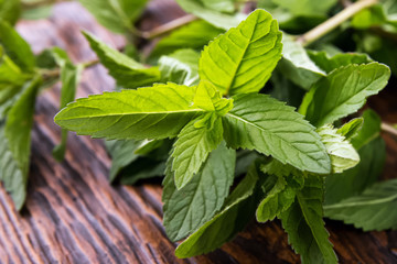 Mint leaves on the table