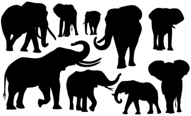 Elefanten Set