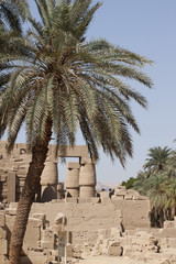 Ruins of an ancient temple in Luxor