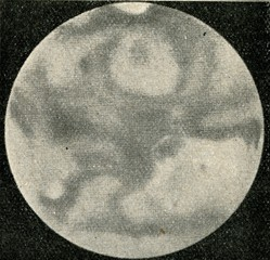 Mars 19. 10. 1926
