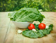 Fresh organic chard - spinach beet - mangold
