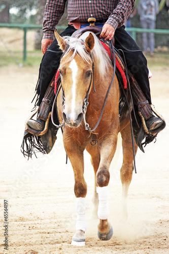 cowboy riding a horse - 65564197