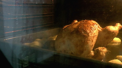 appetizing roast turkey and potatoes in the oven