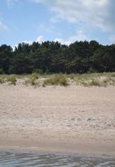 Strand am Waldrand