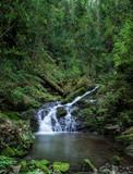 Wasserfall im dunklen Wald