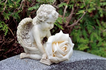 Grabengelchen mit weisser Rose