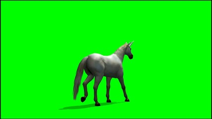 Unicorn walks  - green screen