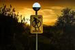 Постер, плакат: No Zombies