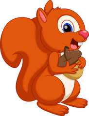 Cute squirrel cartoon