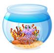 A squid inside the aquarium