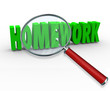 Homework Word Magnifying Glass Project Lesson Assignment