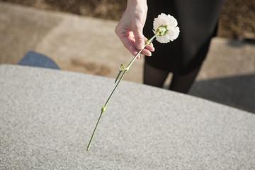 お墓に花を手向ける女性の手元