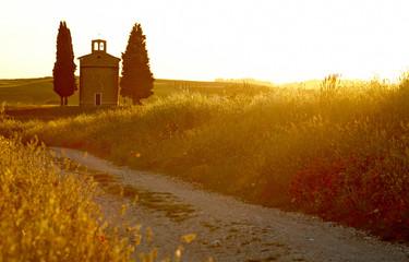 Tuscany summer roads