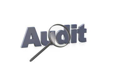 Audit unter der Lupe