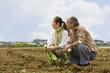 カブを持って畑の中に座るシニアカップル