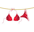 Red bikini suit with white dots hanging on rope - 65581347