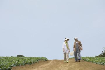 畑の中をかご持って歩くシニアカップル
